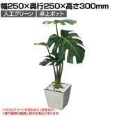 ベルク  フェイクグリーン インテリアグリーン 観葉植物 人工 卓上ミニポット GR4108