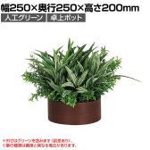 ベルク  フェイクグリーン インテリアグリーン 観葉植物 人工 卓上ポット GR4277