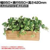 ベルク  フェイクグリーン インテリアグリーン 観葉植物 人工 卓上ポット GR4316