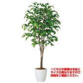 観葉植物 人工 樹木 ベンジャミナスプラッシュトリプル 高さ2000mm Lサイズ 鉢:RP-300