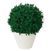 観葉植物 人工 樹木 森ボールポット 高さ270mm Pサイズ 鉢:PラウンドS(WH)