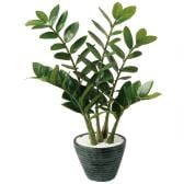 観葉植物 人工 樹木 ザミフォリア 高さ550mm Pサイズ 鉢:PラウンドL(BK)