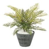 観葉植物 人工 樹木 フェザーファン 高さ300mm Pサイズ 鉢:PラウンドS(BK)
