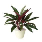 観葉植物 人工 樹木 ランキフォリア 高さ400mm Pサイズ 鉢:PラウンドS(WH)