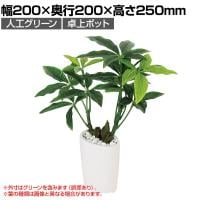 ベルク  フェイクグリーン インテリアグリーン 観葉植物 人工 卓上ミニポット GR4105