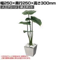 ベルク  フェイクグリーン インテリアグリーン 観葉植物 人工 卓上ミニポット GR4107