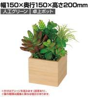 ベルク  フェイクグリーン インテリアグリーン 観葉植物 人工 卓上ミニポット GR4383