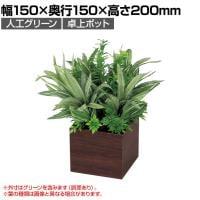 ベルク  フェイクグリーン インテリアグリーン 観葉植物 人工 卓上ミニポット GR4384