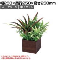 ベルク  フェイクグリーン インテリアグリーン 観葉植物 人工 卓上ミニポット GR4385