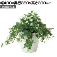 SOCIA アンペロシスアイビー フェイクグリーン 観葉植物 日本製 光触媒加工 V-CAT採用 抗菌 消臭 防汚...