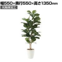SOCIA カシワバゴム1.35 フェイクグリーン 観葉植物 日本製 光触媒加工 V-CAT採用 抗菌 消臭 防汚...