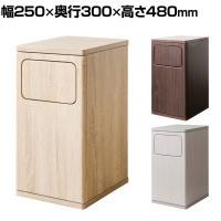 ダストボックス Empro(エンプロー)20L ごみ箱 プッシュ式 ウッド調 コンパクトサイズ 幅250×奥行30...