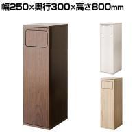 ダストボックス Empro エンプロー ゴミ箱 45L プッシュ式 木製 幅250×奥行300×高さ800mm