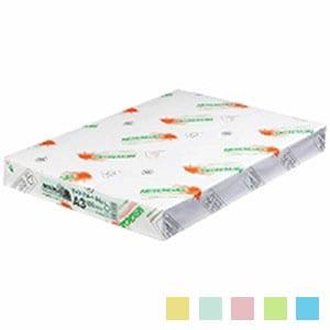 ニューファインカラー PPC用紙 コピー用紙カラー A3 1冊500枚入 北越紀州製紙/EC-A3-500
