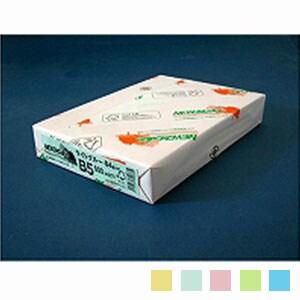 ニューファインカラー PPC用紙 コピー用紙カラー B5 1冊500枚入 北越紀州製紙/EC-B5-500