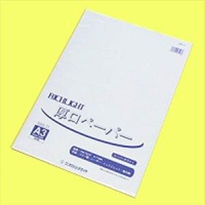リッチライト厚口カラーペーパー スーパーホワイト A3 1冊50枚入 オストリッチダイヤ/EC-RAA-31