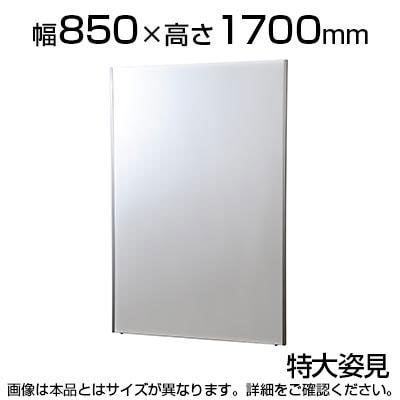 割れない鏡 リフェクスミラー 特大姿見 幅850×厚さ27×高さ1700mm 軽い 安全 学校 病院 施設 教室