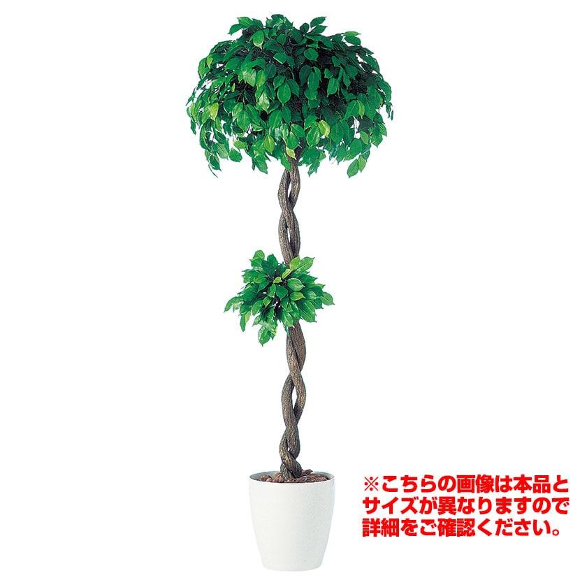 観葉植物 人工 樹木 フィッカスベンジャミナダブル 高さ2000mm Lサイズ 鉢:RP-370