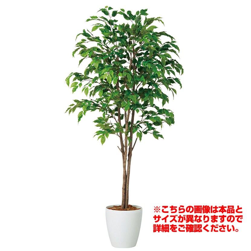 観葉植物 人工 樹木 ベンジャミナスプラッシュトリプル 高さ1500mm Mサイズ 鉢:RP-265