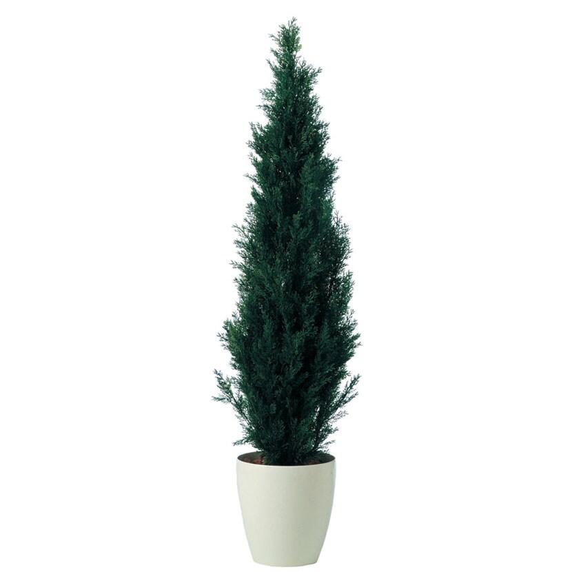 観葉植物 人工 樹木 ブルーポイント 高さ1600mm Mサイズ 鉢:RP-300