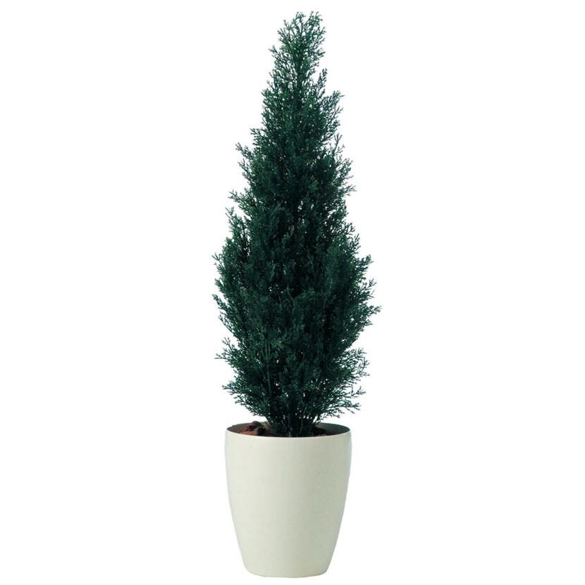 観葉植物 人工 樹木 ブルーポイント 高さ950mm SSサイズ 鉢:RP-225