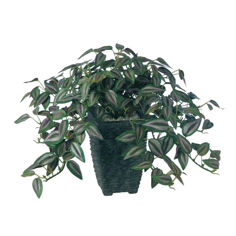 観葉植物 人工 樹木 セブリナ 高さ250mm 卓上サイズ 鉢:Pスクエア(BK)