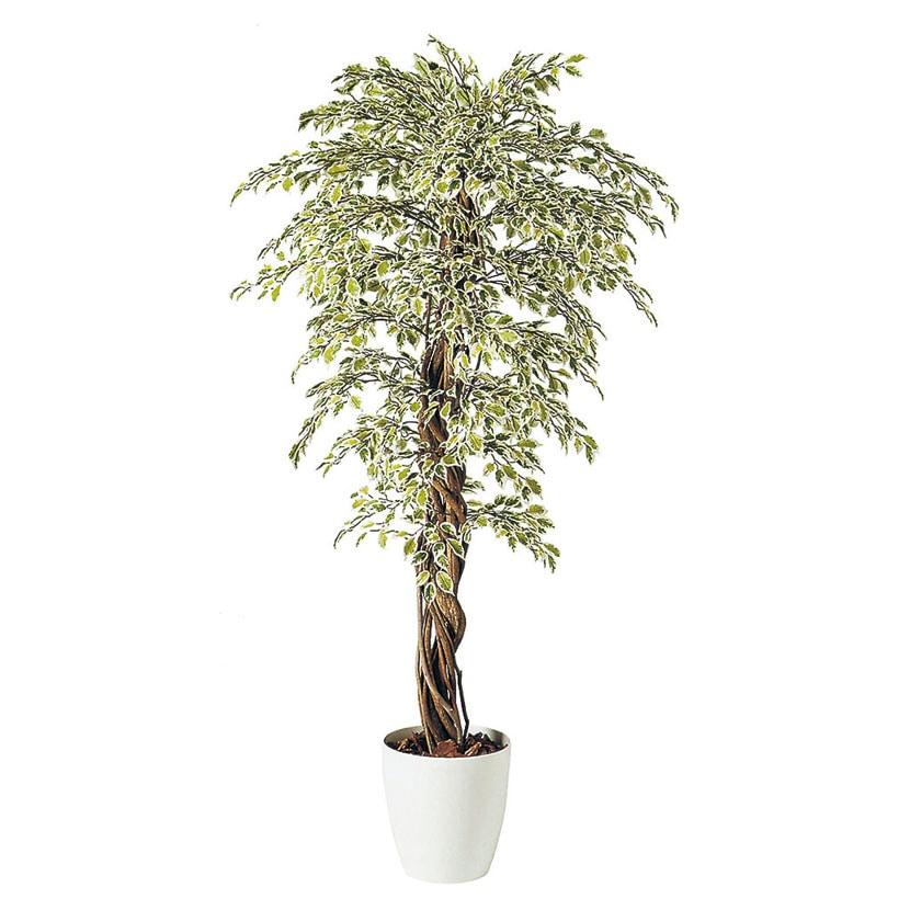 観葉植物 人工 樹木 ベンジャミナスターライトリアナ 高さ1800mm Lサイズ 鉢:RP-300