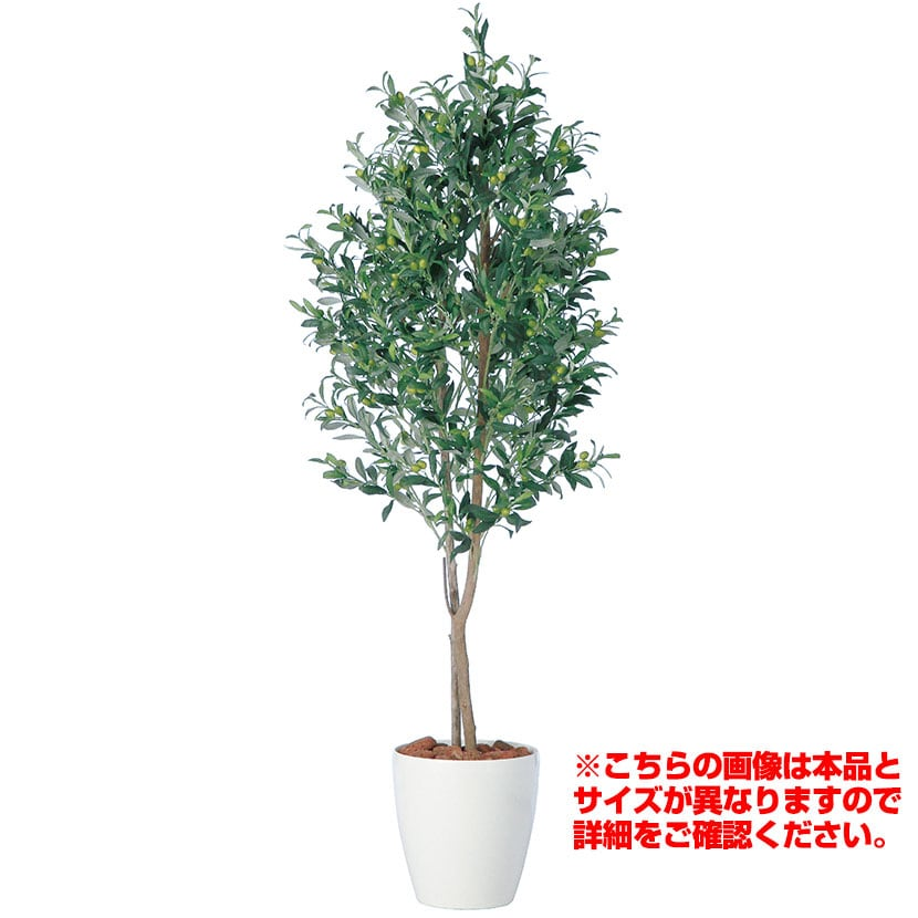 観葉植物 人工 樹木 ライプオリーブデュアル 高さ1500mm Mサイズ 鉢:RP-265