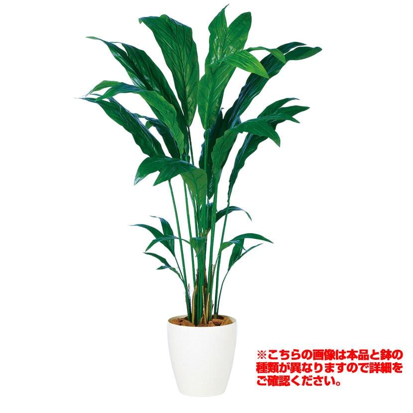 観葉植物 人工 樹木 チャメドレア 高さ1500mm Mサイズ 鉢:簡易ポット