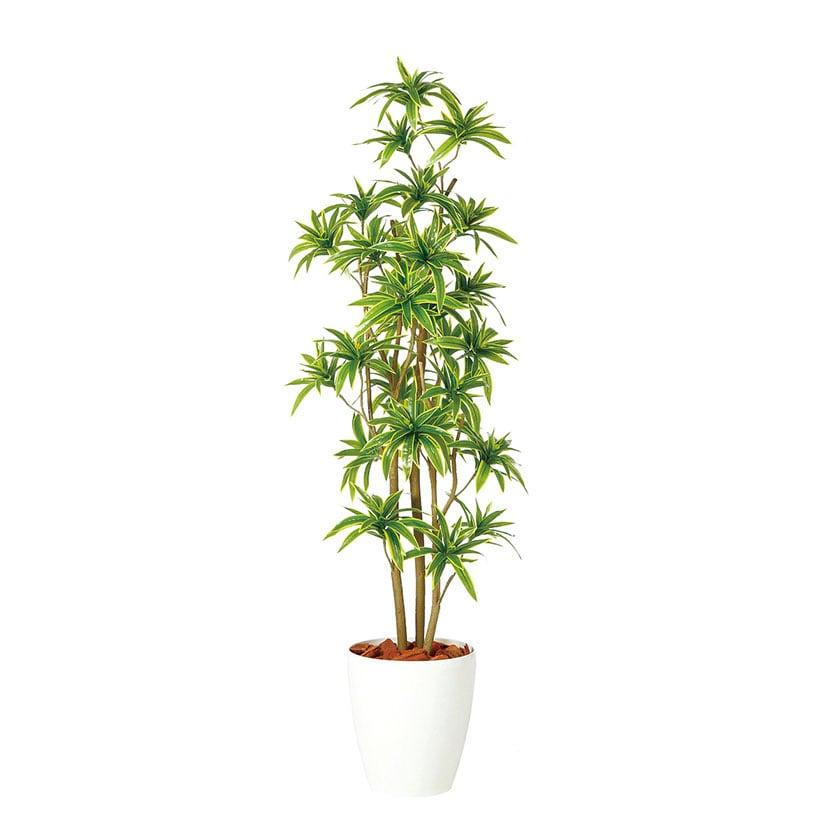 観葉植物 人工 樹木 ソング・オブ・インディア FST 高さ1500mm Mサイズ 鉢:RP-265