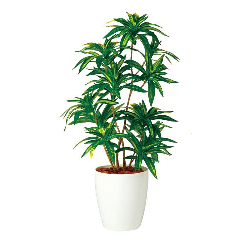 観葉植物 人工 樹木 ソング・オブ・ジャマイカ 高さ700mm SSサイズ 鉢:RP-185