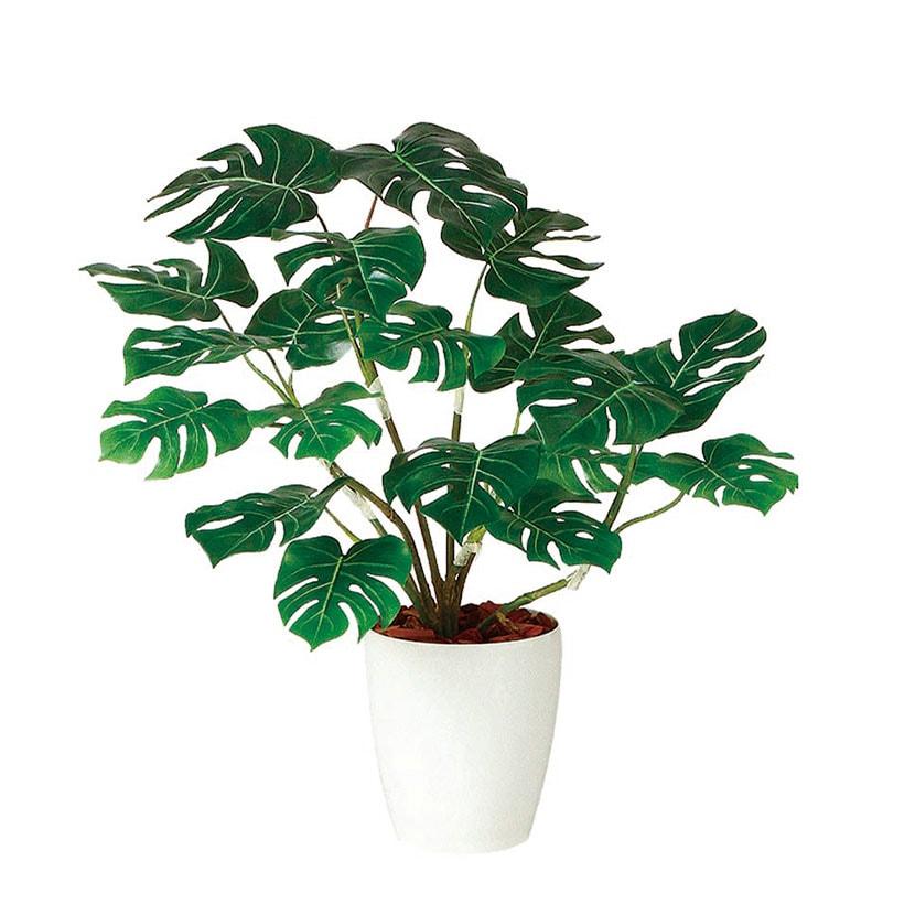 観葉植物 人工 樹木 モンステラ R 高さ700mm SSサイズ 鉢:RP-185