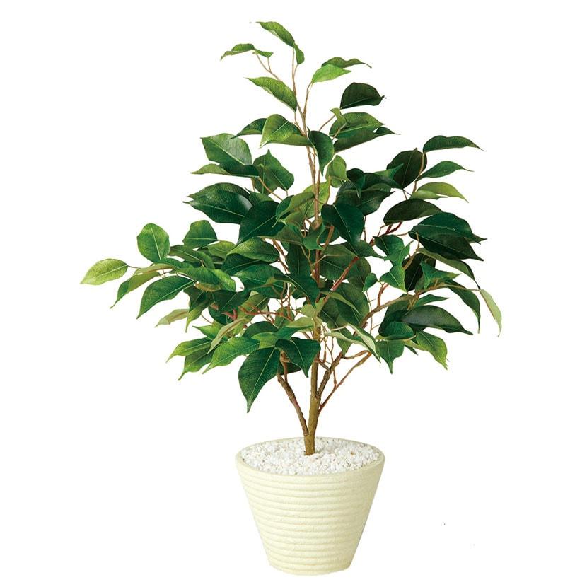 観葉植物 人工 樹木 テーブル ベンジャミン 高さ550mm Pサイズ 鉢:PラウンドS(WH)