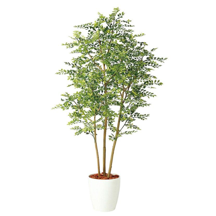 観葉植物 人工 樹木 ゴールデンリーフ FST 高さ1800mm Lサイズ 鉢:RP-300