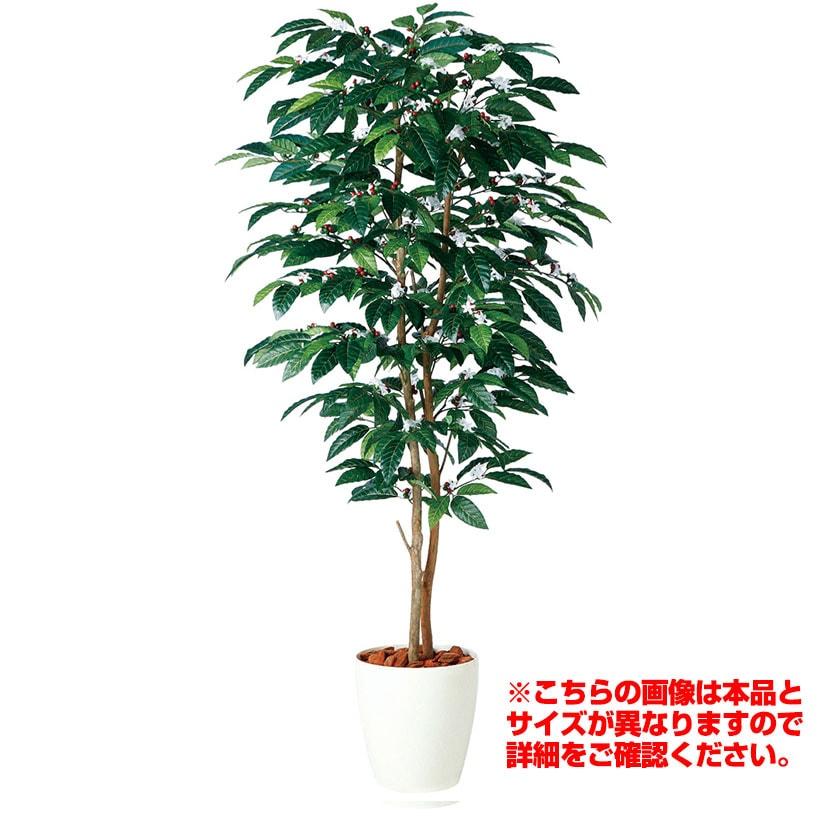 観葉植物 人工 樹木 コーヒーデュアル 高さ2000mm Lサイズ 鉢:RP-300