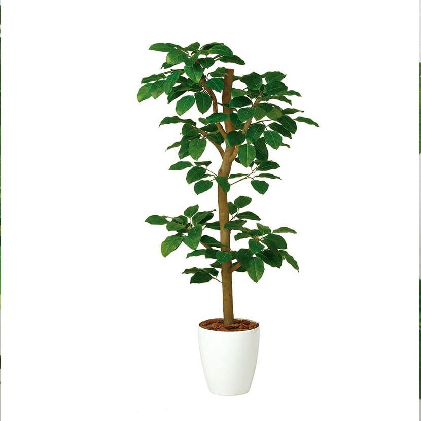 観葉植物 人工 樹木 ベンガルボダイジュ N-style 高さ1500mm Mサイズ 鉢:RP-265