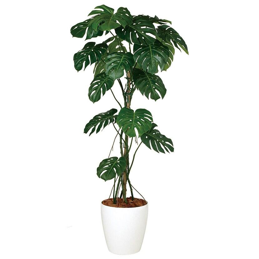 観葉植物 人工 樹木 モンステラバイン 高さ1800mm Lサイズ 鉢:RP-370