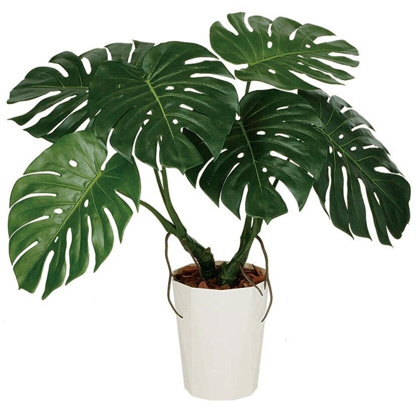 観葉植物 人工 樹木 モンステラバイン MIX 高さ700mm SSサイズ 鉢:クォーツ180