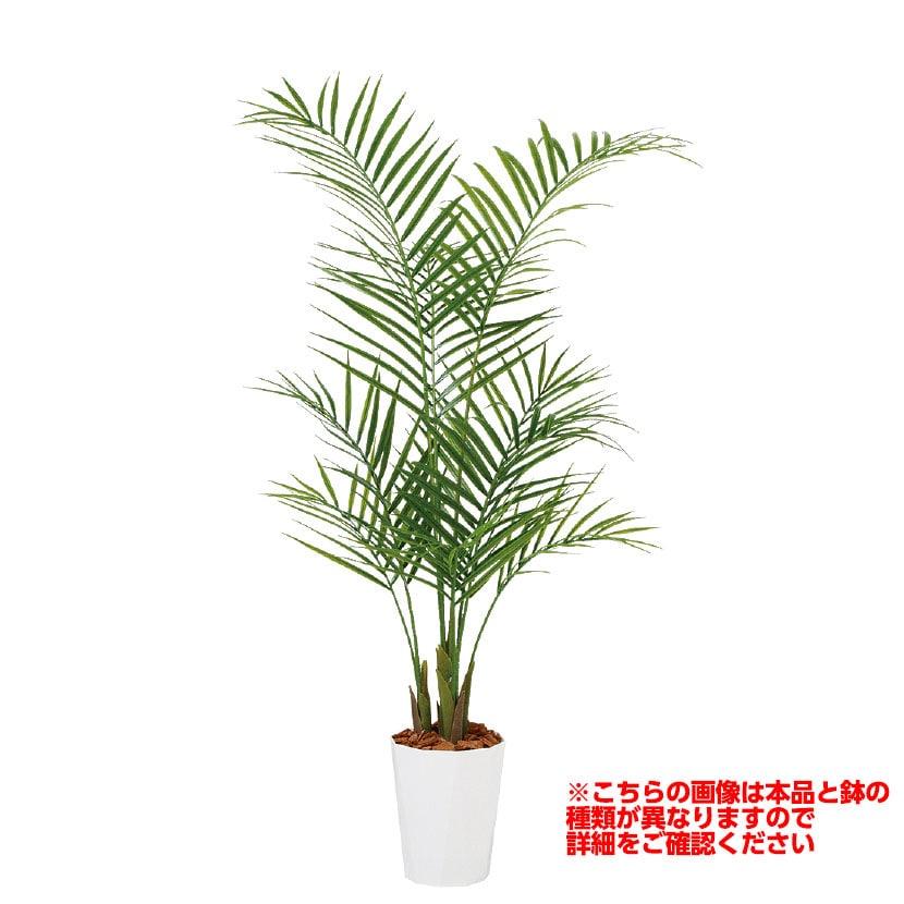 観葉植物 人工 樹木 アレカヤシ PE 高さ1200mm Sサイズ 鉢:簡易ポット
