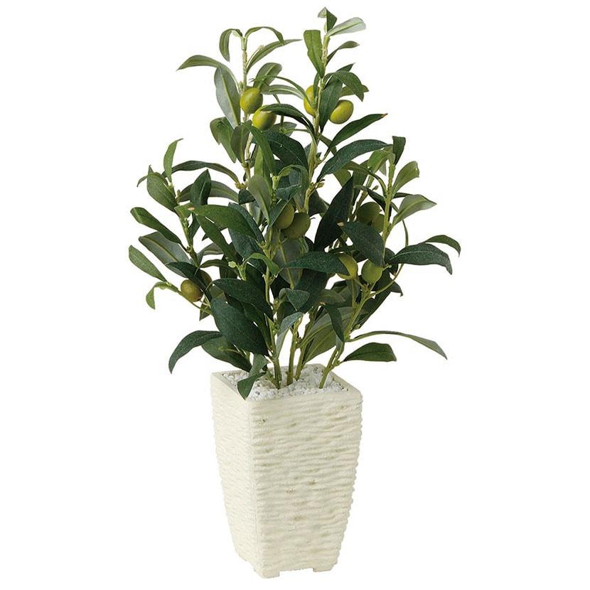 観葉植物 人工 樹木 ライプオリーブ 高さ400mm Pサイズ 鉢:Pスクエア(WH)