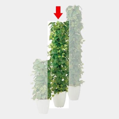 観葉植物 人工 樹木 ライムポトス ヘゴGREEN 高さ1500mm Mサイズ 鉢:RP-265